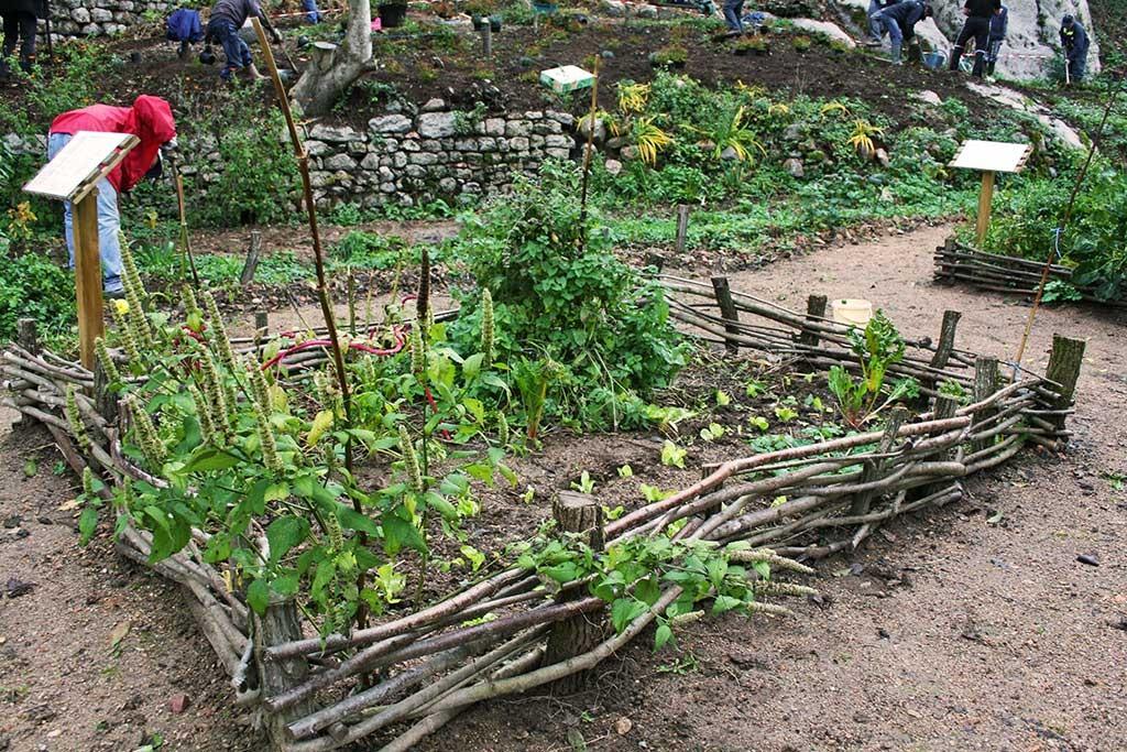 Travaux au jardin de Donzy
