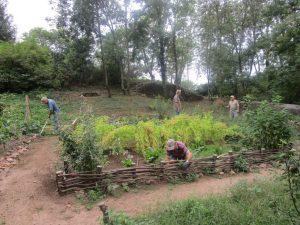 img_3661-jpg-jardin