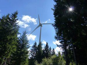 Etangs de Barthes, les éoliennes