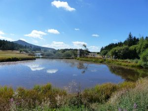 Les étangs de Barthes