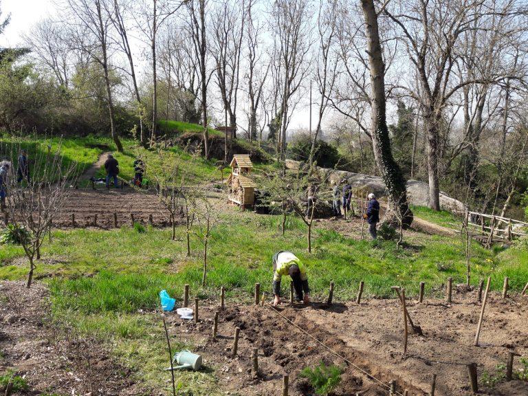 Corvée 20190412 jardin 1