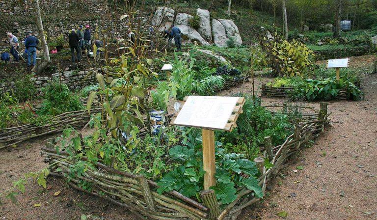 Conférence Histoire des Parcs et Jardins