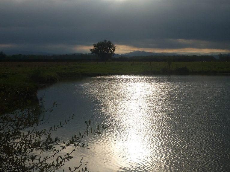 Conférence sur les étangs du Forez